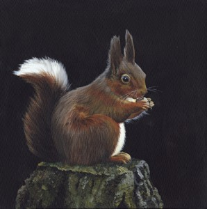 Catherine Bremner Nutmeg Squirrel (1)