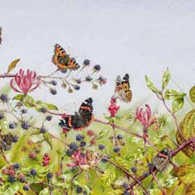 Jewels in the Hedgerow watercolour painting by Jenny Musker