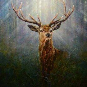Red Deer Stag by Chris Sharp
